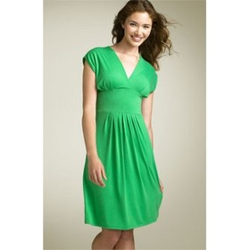 Green Sleeved V-Neck Dress