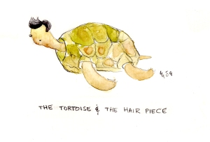 Tortoise with Hair!